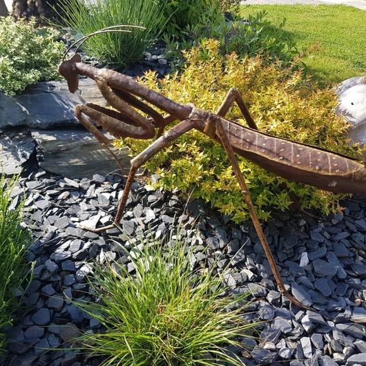 Quand la nature reprend ses droits... 🦗🌷 La gamme de décoration extérieure Arrosoir et Persil est à découvrir chez RO'MA Nature !